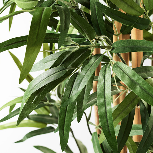 FEJKA - artificial potted plant, in/outdoor bamboo | IKEA Hong Kong and Macau - PE594501_S4