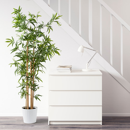 FEJKA - artificial potted plant, in/outdoor bamboo | IKEA Hong Kong and Macau - PE594646_S4