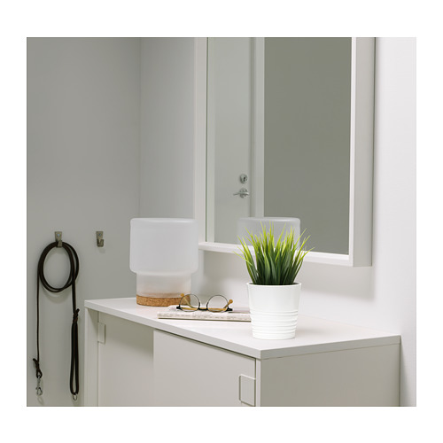 FEJKA - artificial potted plant, in/outdoor grass | IKEA Hong Kong and Macau - PE724766_S4