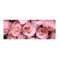 BJÖRKSTA - picture, Pink peony | IKEA Hong Kong and Macau - PE724835_S3