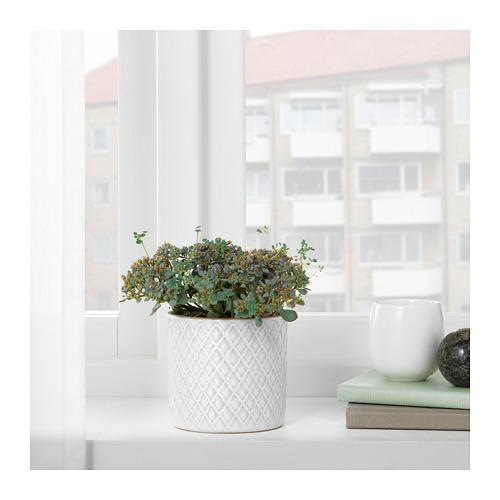 CHIAFRÖN - 花盆, 白色   IKEA 香港及澳門 - PE725675_S4