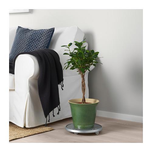 KAMOMILL - 花盆, 綠色 | IKEA 香港及澳門 - PE725670_S4
