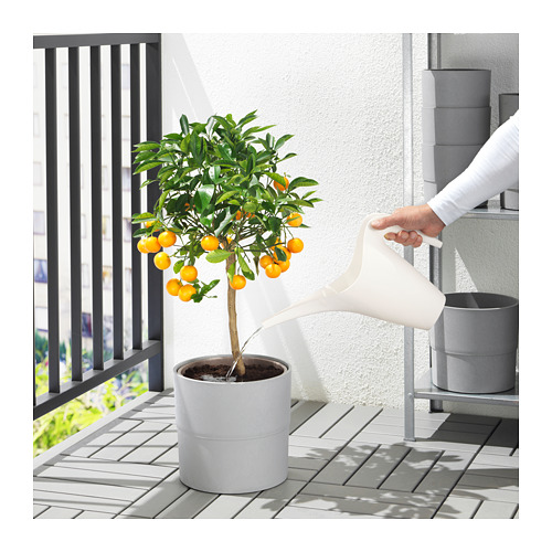 IKEA PS 2002 - watering can, white | IKEA Hong Kong and Macau - PE725684_S4