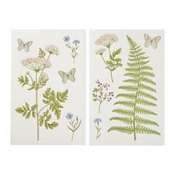 KINNARED - decoration stickers, Fern & flowers | IKEA Hong Kong and Macau - PE725946_S3