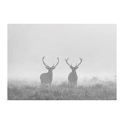 BJÖRKSTA - picture, Deers in fog | IKEA Hong Kong and Macau - PE771123_S3
