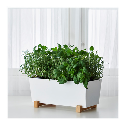 BITTERGURKA - 花盆, 白色 | IKEA 香港及澳門 - PE429349_S4