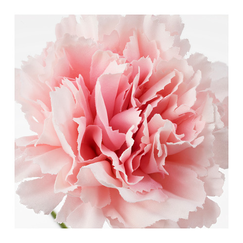SMYCKA - artificial flower, carnation/pink | IKEA Hong Kong and Macau - PE685417_S4