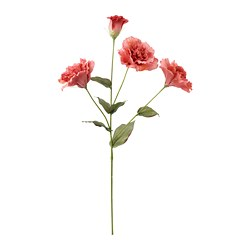 SMYCKA - artificial flower, Lisianthus | IKEA Hong Kong and Macau - PE685440_S3