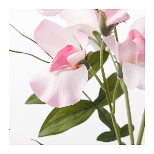 SMYCKA - artificial flower, Sweet pea/light pink   IKEA Hong Kong and Macau - PE685462_S4