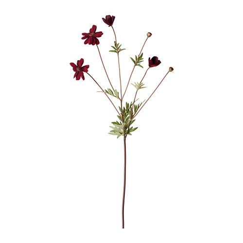 SMYCKA - artificial flower, cosmos/dark red | IKEA Hong Kong and Macau - PE685461_S4