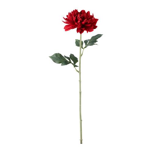 SMYCKA - 人造花, 大麗花 | IKEA 香港及澳門 - PE685470_S4