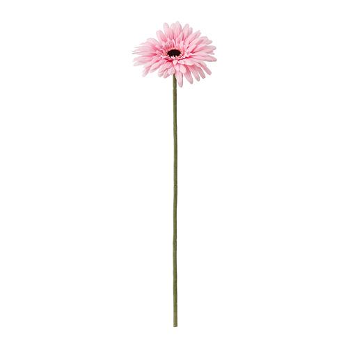 SMYCKA 人造花, 非洲菊