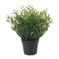 FEJKA - 人造盆栽, 室內/戶外用 萬年青 | IKEA 香港及澳門 - PE728351_S3