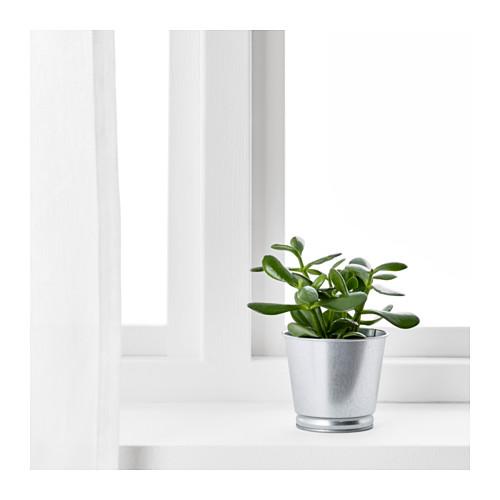 BINTJE - plant pot, galvanised | IKEA Hong Kong and Macau - PE639172_S4