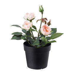 FEJKA - artificial potted plant, in/outdoor/Rose pink | IKEA Hong Kong and Macau - PE686803_S3