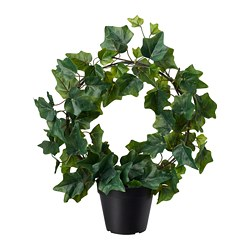 FEJKA - artificial potted plant, in/outdoor/Ivy bow | IKEA Hong Kong and Macau - PE686805_S3