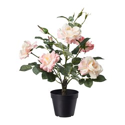 FEJKA - artificial potted plant, in/outdoor/Rose pink | IKEA Hong Kong and Macau - PE686811_S3