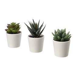 FEJKA - artificial potted plant with pot, in/outdoor Succulent | IKEA Hong Kong and Macau - PE686812_S3