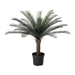 FEJKA - 人造盆栽, 室內/戶外用 蘇鐵 | IKEA 香港及澳門 - PE686820_S3