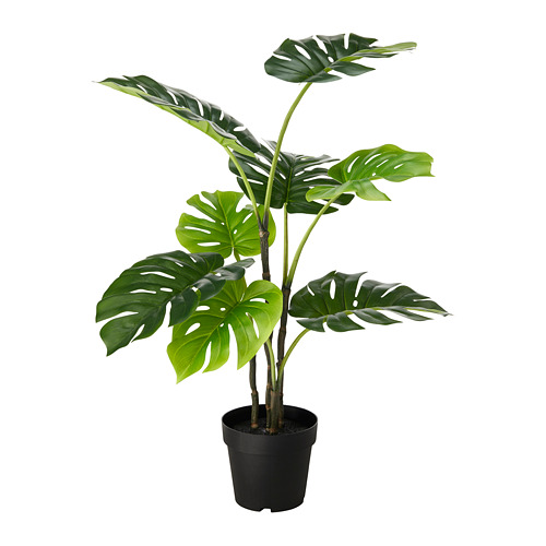 FEJKA - artificial potted plant, in/outdoor Monstera | IKEA Hong Kong and Macau - PE686822_S4