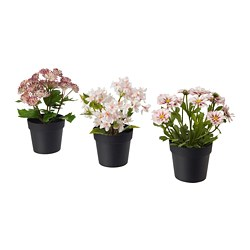 FEJKA - artificial potted plant, in/outdoor pink | IKEA Hong Kong and Macau - PE686829_S3