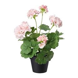 FEJKA - 人造盆栽, 室內/戶外用/天竺葵 粉紅色 | IKEA 香港及澳門 - PE686831_S3