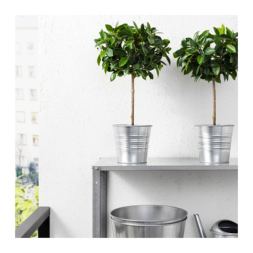 FEJKA artificial potted plant