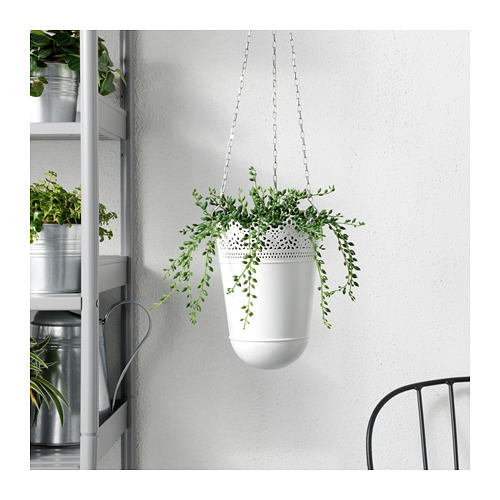 FEJKA - artificial potted plant, in/outdoor String of beads | IKEA Hong Kong and Macau - PE687831_S4