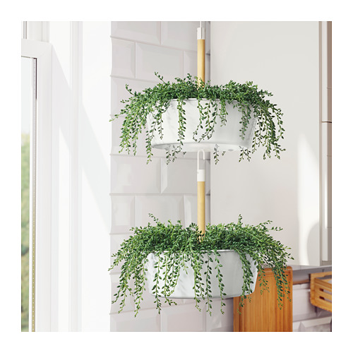 FEJKA - artificial potted plant, in/outdoor String of beads | IKEA Hong Kong and Macau - PE687832_S4