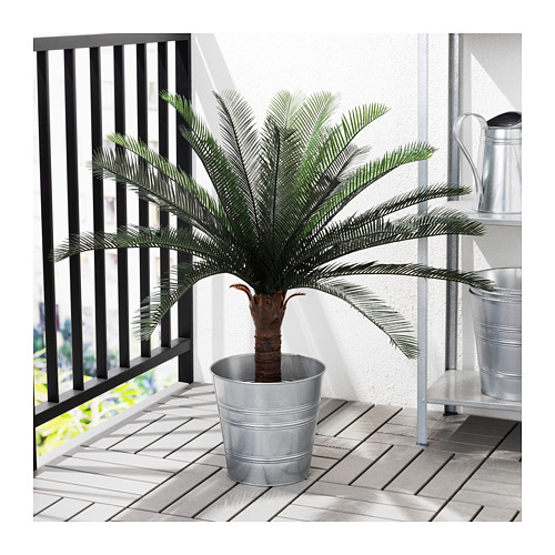 FEJKA - artificial potted plant, in/outdoor sago palm | IKEA Hong Kong and Macau - PE687833_S4