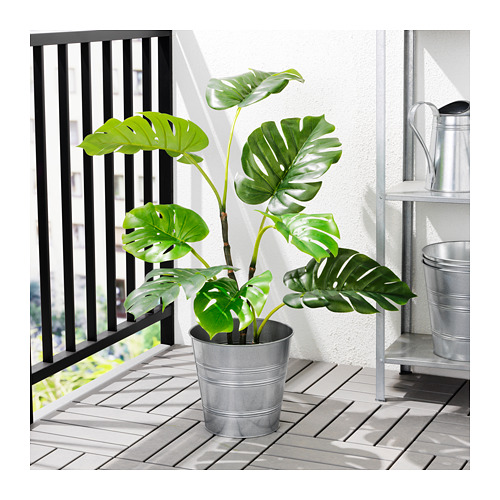 FEJKA - artificial potted plant, in/outdoor Monstera | IKEA Hong Kong and Macau - PE687834_S4