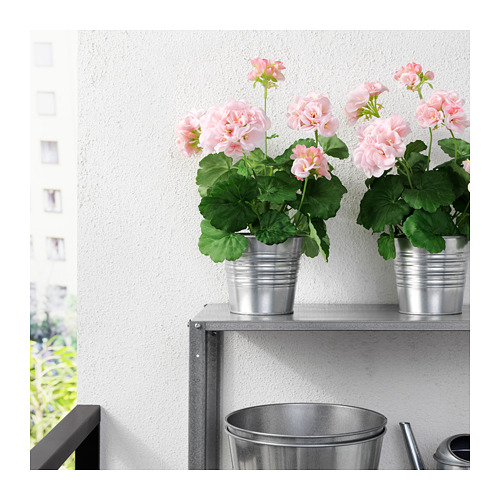 FEJKA - artificial potted plant, in/outdoor/Geranium pink | IKEA Hong Kong and Macau - PE687856_S4