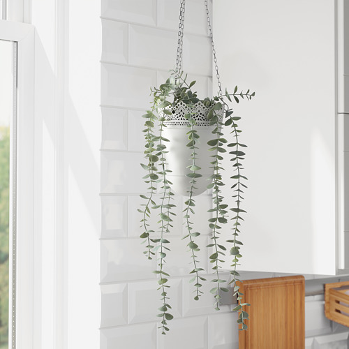 FEJKA - artificial potted plant, in/outdoor hanging/eucalyptus | IKEA Hong Kong and Macau - PE774214_S4