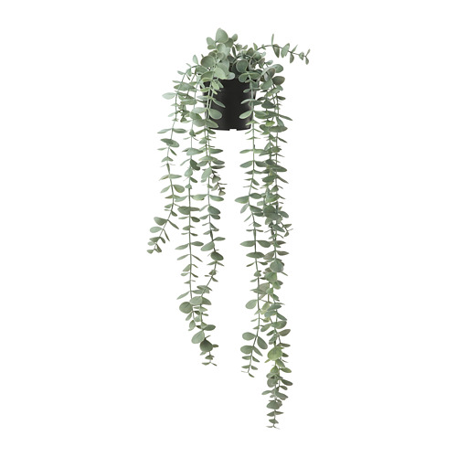 FEJKA - artificial potted plant, in/outdoor hanging/eucalyptus | IKEA Hong Kong and Macau - PE774216_S4