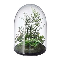 INVÄNDIG - 人造盆栽 | IKEA 香港及澳門 - PE774208_S3