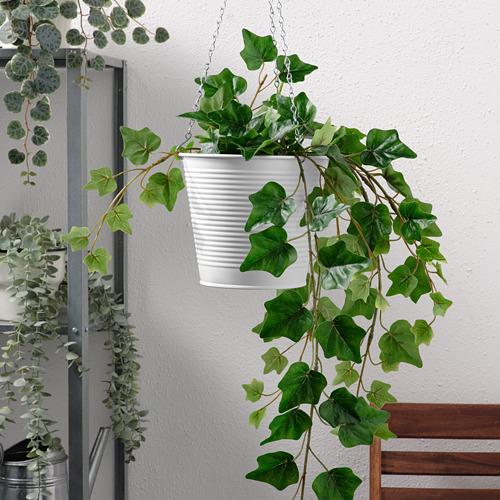 CASHEWÄPPLE hanging planter