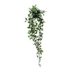 FEJKA - 人造盆栽, 室內/戶外用/懸掛 | IKEA 香港及澳門 - PE643382_S3