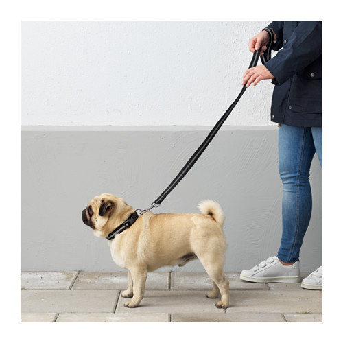 LURVIG - 反光狗帶, 黑色 | IKEA 香港及澳門 - PE644223_S4