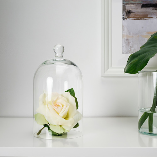 MORGONTIDIG - 玻璃罩, 透明玻璃 | IKEA 香港及澳門 - PE734895_S4