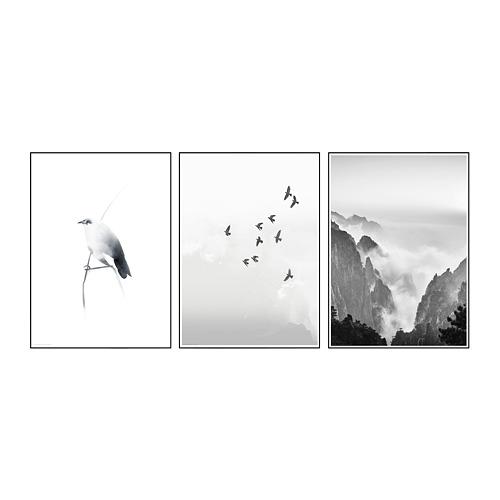 BILD - 海報, 樹枝上的小鳥 | IKEA 香港及澳門 - PE789764_S4