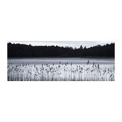 BJÖRKSTA - picture, Woodland lake | IKEA Hong Kong and Macau - PE776681_S3
