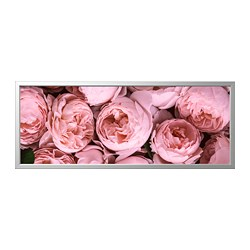 BJÖRKSTA - picture with frame, Pink peony/aluminium-colour | IKEA Hong Kong and Macau - PE737262_S3