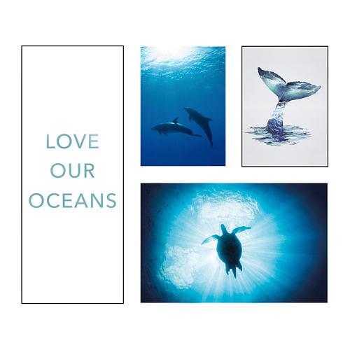PJÄTTERYD - 畫,4件套裝, 海底世界 | IKEA 香港及澳門 - PE791486_S4