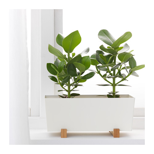 BITTERGURKA - 花盆, 白色 | IKEA 香港及澳門 - PE588584_S4