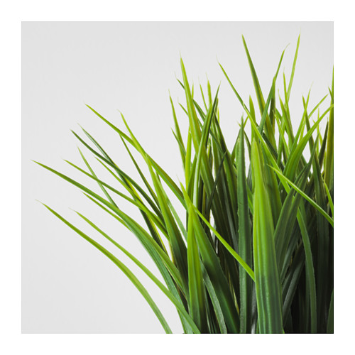 FEJKA - artificial potted plant, in/outdoor grass | IKEA Hong Kong and Macau - PE594484_S4