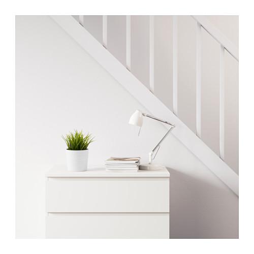 FEJKA - 人造盆栽, 室內/戶外用 草 | IKEA 香港及澳門 - PE594655_S4