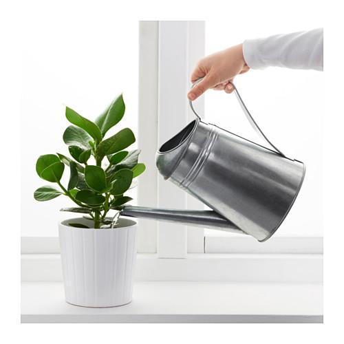 SOCKER - 澆水壺, 室內/戶外用/鍍鋅   IKEA 香港及澳門 - PE594691_S4
