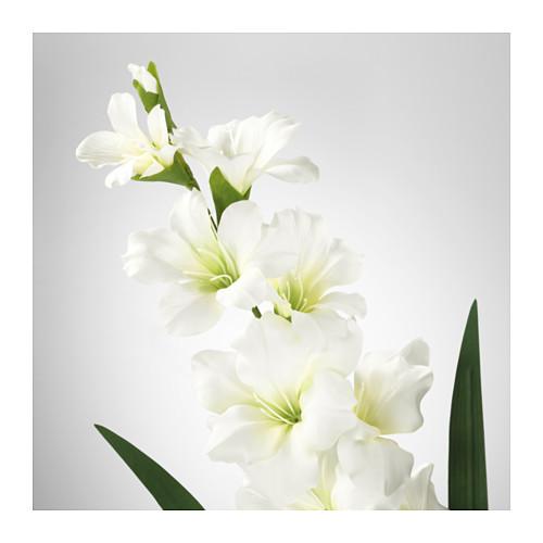 SMYCKA - 人造花, 劍蘭/白色 | IKEA 香港及澳門 - PE595317_S4