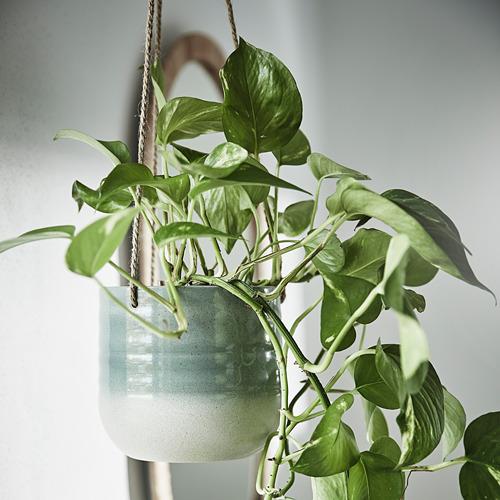 KAPKRUSBÄR - 掛式花盆架, 灰綠色 | IKEA 香港及澳門 - PE797869_S4