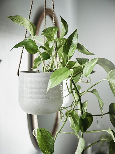 KAPKRUSBÄR - 掛式花盆架, 淺灰色   IKEA 香港及澳門 - PE797870_S4